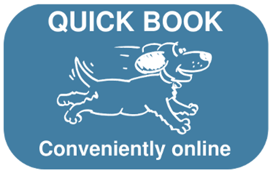 Book Right Now Graphic
